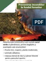 Prevenirea Incendiilor La Fondul Forestier