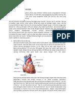 ANATOMI_JANTUNG_MANUSIA.pdf