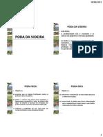 poda  VIDEIRA.pdf