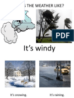 Whats the Weather Like POWER POINT PR.