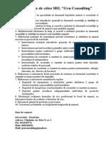 oferta gvn consulting srl ssm.doc