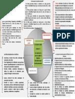 ACTIVIDAD MAPA CONCEPTUAL.docx