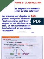 Partie 2 Enzymo FEV 12