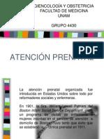 Atención Prenatal (1)Atención prenatal