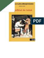 Ojog-Brasoveanu-Rodica-Logofatul-de-Taina-v3-0
