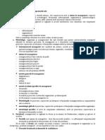 Sistemul de Management si componentele sale