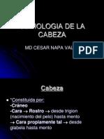 SEMIOLOGIA DE LA CABEZA.ppt