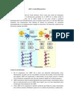 ARN o Ácido Ribonucleico