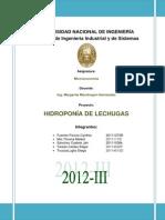 Hidroponía de Lechugas