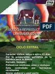 3. FISIOLOGIA REPRODUCTIVA