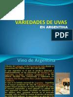 20131104003706_UVAS87787867681