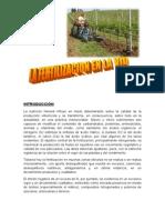La Fertilizacion en La Vid