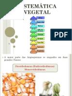 Botanica e Sistematica Vegetal Aula 1111 Nomenclatura Botanica