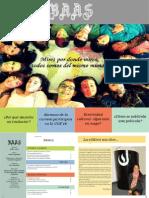 Revista BAAS traducción
