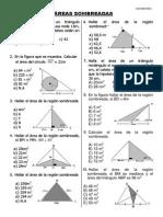 AREAS-  SOMBREADAS.pdf