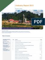 Vietnam Cement Sector Report 2013 Demo
