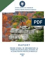 Raport a Implementarii PNAPM