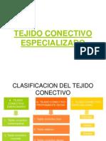 TEJIDO CONECTIVO ESPECILIZADO.ppt