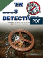 Detectivii Apei Pierdute Nr. 7