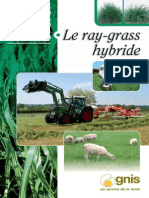 Petit Guide Pratique Gnis - Ray Grass Hybride