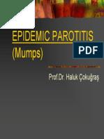Epidemic Parotitis