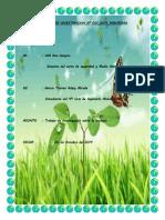 TRABAJO DE INVESTIGACION ecologia.docx