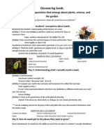 rough outline of activities for seeds
