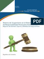 Sistema de Juzgamiento Penal Para Adolescentes - Colombia