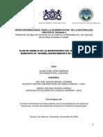 plan de manejo de la microcuenca del rio.pdf