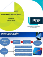 Gerencia Expo Riesgo y Presupuesto Capital