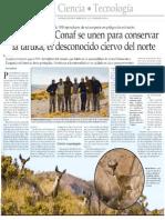 Cientificos y CONAF Se Unen Para Conservar La Taruka- El Desconocido Ciervo Del Norte -El Mercurio 10-12-2014