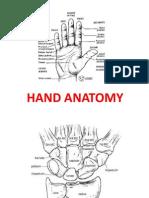hand__footanatomy.pptx