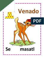 Numeros en Nahuatl Del 1 Al 20