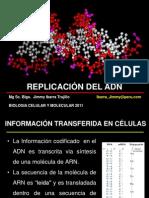 26-Replicacion del ADN.ppt