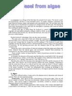 Report, Biodiesel From Algae, 12.08