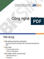 GPP Dinh Co.pdf
