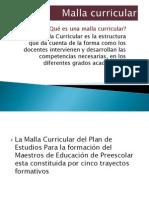 Malla curricular- panorama.pptx