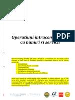 suport operatiuni intracomunitare_1413917291.pdf