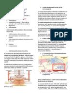 Fosforilación oxidativa resumen