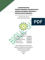 Laporan Praktikum Genetika Tata Cara Menangani Drosophila, Pengamatan Siklus Hidup Drosophila, Determinasi Drosophila, & Pengenalan Mutan Drosophila KELOMPOK A