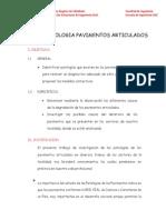 INFORME PAVIMENTO ARTICULADO