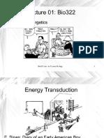 002 Bio322 Energy