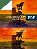 TEMA 3 - BASES FISIOLÓGICAS DEL APRENDIZAJE.