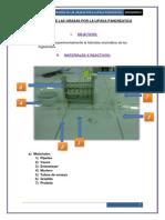 hidrolisis Pancreatica