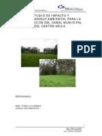 EIA-Camal.pdf
