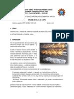 estudio de pollerias juliaca