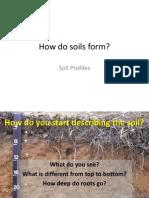 Pembentukan Profil Tanah