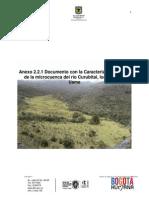 Anexo 2.2.1. Caracterizacion rio Curubita