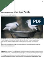 Curik-Melukis-Alam-Nusa-Penida-Kompas-6-Nov-2013.pdf