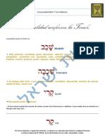 La Sexualidad Conforme La Torah 1